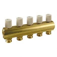 Коллектор с термостатическими клапанами 1x18 /2 Giacomini R553V R553VY002